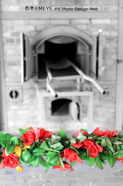 Fotografías de Europa por Emeyé Crematorio