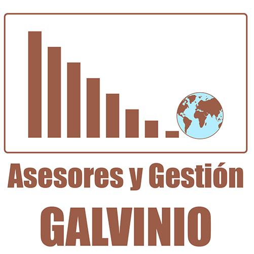 Logotipo Asesores y gestión Galvinio