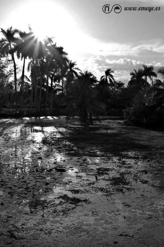 Reportaje Fotográfico Emeyé Cienaga de Zapata